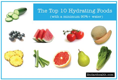 top 10 foods top 10 hydrating foods 2ndact health testing services