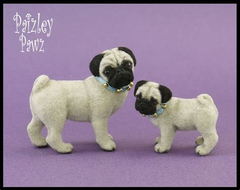 how pugs were made 1000 images about custom model re duex on coats chihuahuas and models