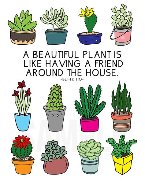 plant lovers coloring sheet for plant lovers live laugh rowe