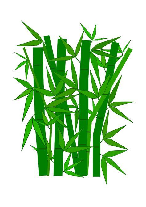 bamboo clip bamboo clip free foto 2017