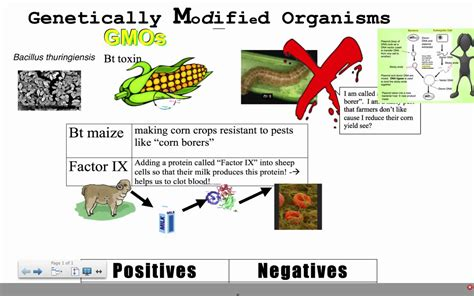 Modified Organism Definition by Organism Definition Biology Driverlayer Search Engine