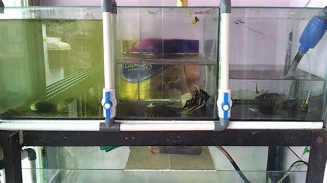 fish room water change system aquarium water drain system