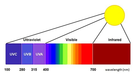 Violet Light Wavelength by Advanced Products For Eradicating Mrsa C Diff Norovirus