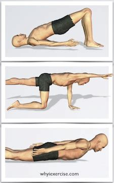 strengthening exercises illustrated  lifelike