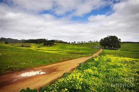 Colorful Home Decor by Countryside Landscape Photograph By Carlos Caetano