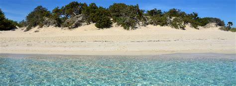cronaca di porto cesareo maggior rispetto per le dune di porto cesareo