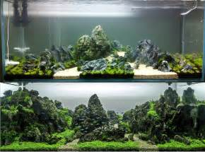 Freshwater Aquascaping Ideas From The Start To Finish Aquascape By Greg Charlet