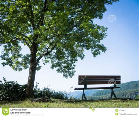 park bench photography park bench royalty free stock photography image 28376877