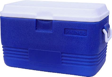 Cooler Box usane olulenyanga ezingu 10 lugalule ku cooler box umthunywa