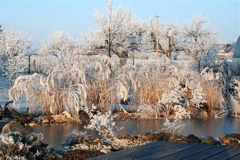 winter gartenbau winter schnittarbeiten wartungsarbeiten lauterwasser