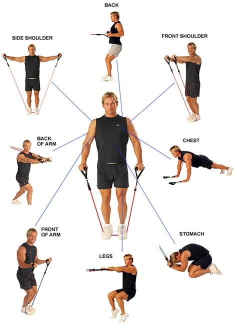 shoulder workout with cable exercises hayward s