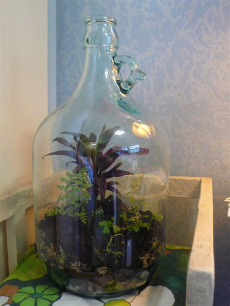 garden in a bottle bottle garden berry мир