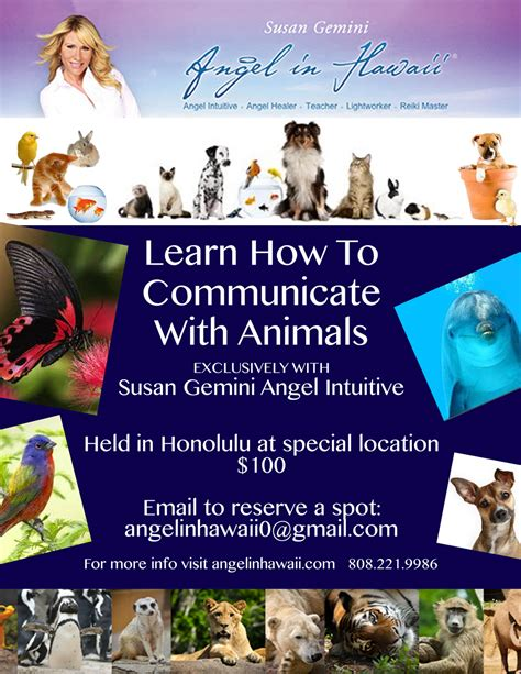 how to communicate with a gemini animal communication certification in hawaii susan geminiangel in hawaii susan gemini