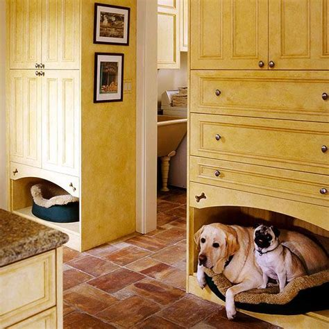 cool beds for dogs 253 best images about kitchen convenience on pinterest