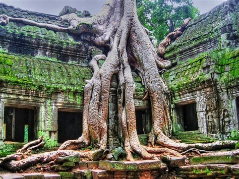 talkkhmer architecture wikipedia 17 best images about lost cities on pinterest maya the
