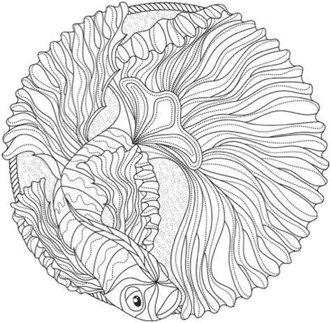 ocean mandala coloring pages mandala coloring books 20 of the best coloring books for