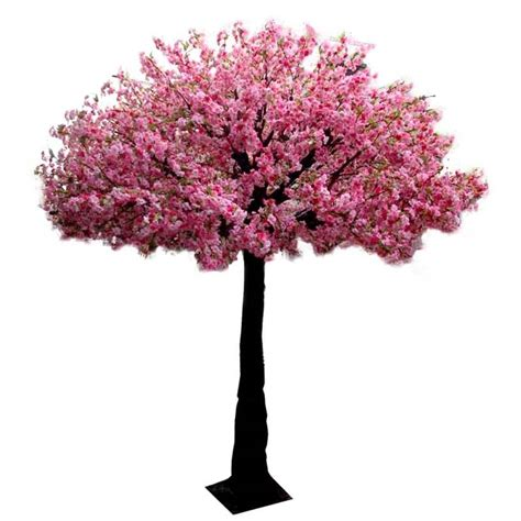 cherry tree events solutions p ltd cherry blossom tree 10ft pink event tree hire