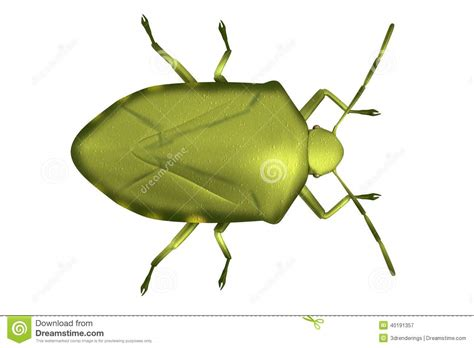 bug xl reguler 1gb 3d render of stink bug stock illustration image 40191357