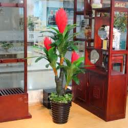 Living Room Artificial Plants The New Living Room Flowers Artificial Plants Plastic