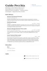 Business Development Director Sle Resume by Diretor De Desenvolvimento De Neg 243 Cios Exemplo Cv Visualcv Retomar Amostras De Banco De Dados