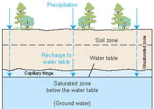 Drawing showing how surface water infiltrates into the ground to be