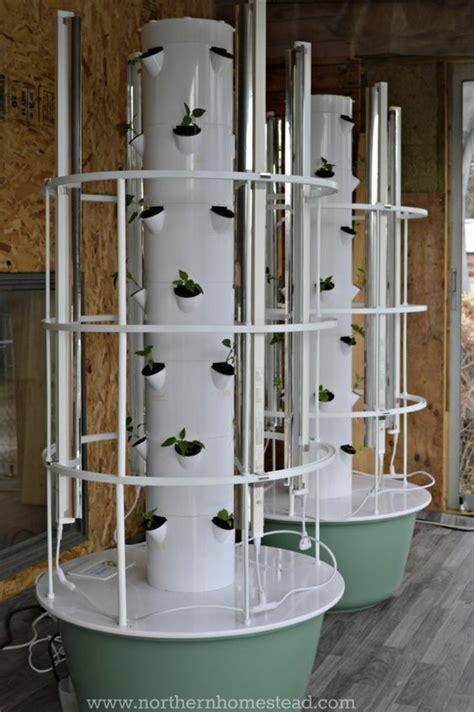 planting  hydroponic garden taf vegetable gardening
