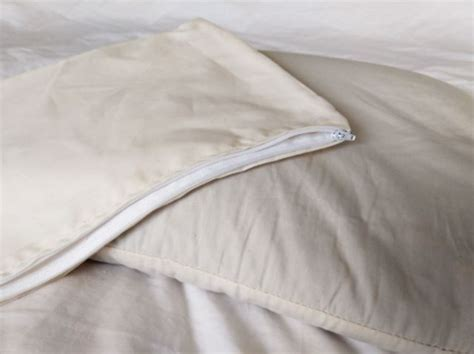sobakawa pillow nature s pillows sobakawa buckwheat pillow review the