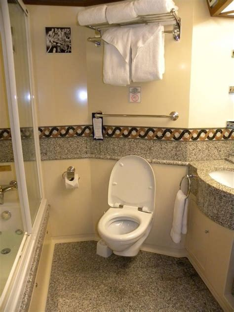how to cruise in a bathroom 17 best images about carnival cabins on pinterest the