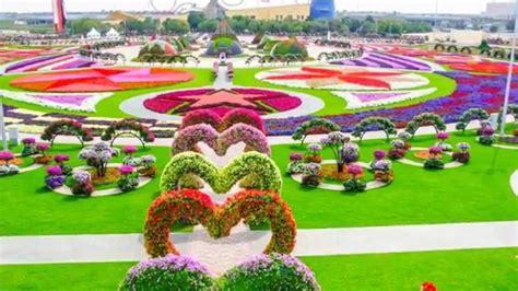 imagenes de jardines lindos lindos jardines de dubai hd youtube