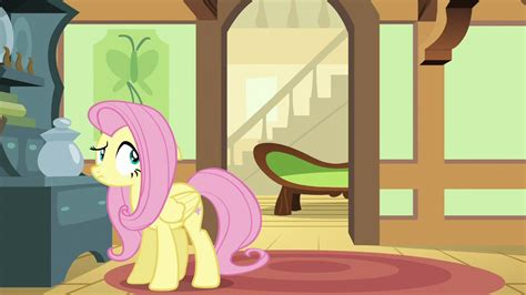 my little pony sofa image fluttershy sees her couch moving down the hall