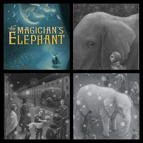 how to find an elephant books the magician s elephant who doesn t like elephants the