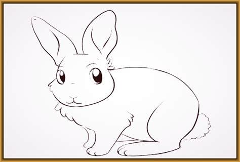 imagenes de conejitos bonitos para dibujar archivos imagenes de conejitos bonitos para dibujar archivos