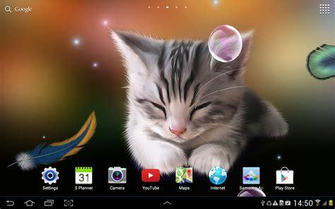kitten wallpaper for windows 7 sleepy kitten live wallpaper android apps on google play