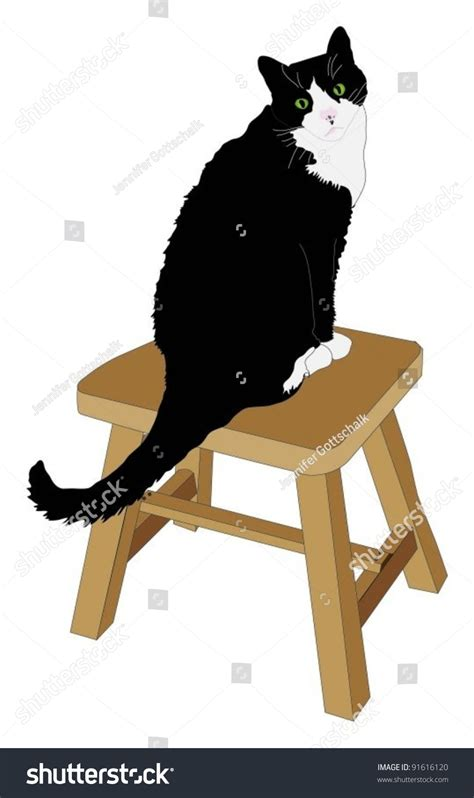 Cat Black Stool by Black And White Cat Sitting On Stool Stock Vector