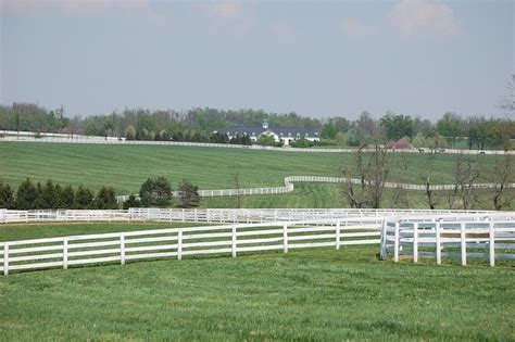 Bluegrass Upholstery Ky by 17 Best Images About Kentucky Bluegrass On