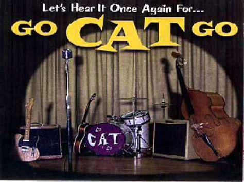 Catok And Go go cat go wmv