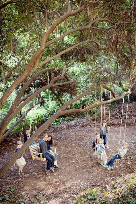 tree swing for kids 1000 ideas about tree swings on pinterest swings