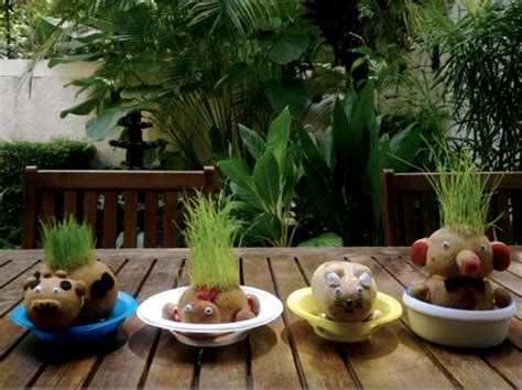Boneka Horta Pelihara Tumbuh Rumput Asli mengenal boneka horta dan boneka potty bibitbunga