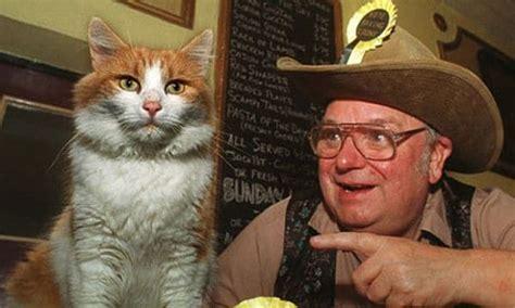 los gatos m 225 s famosos de los los 15 gatos m 225 s famosos de la historia celebridades felinas