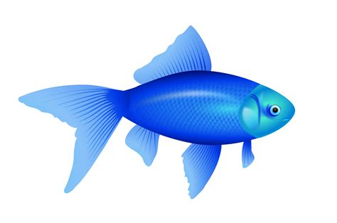 Mini Fish Blue fish png image free