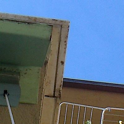 impermeabilizzazione terrazze pavimentate impermeabilizzare terrazze pavimentate san lazzaro di