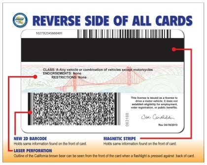 What Does The Backview Of A U S Driver S Licence Look Like Quora Canadian Auto Id Card Template