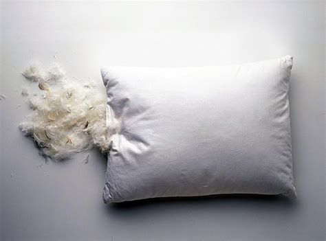 Feather Pillow by How To Wash Feather Bed Pillows