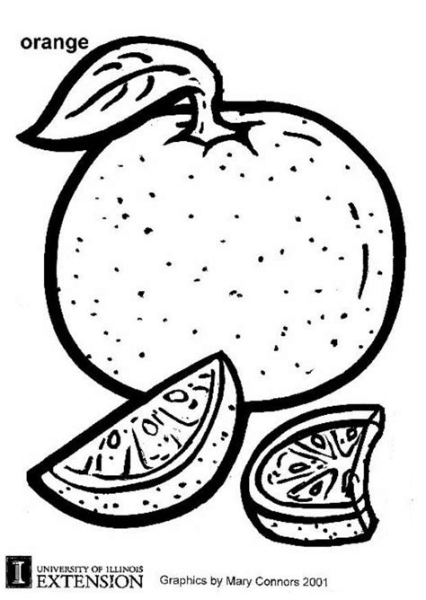 13 Fruit Quot Orange Quot Coloring Books For Education Orange Coloring Pages