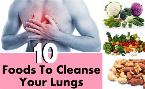 Best Way To Detox Lungs by 10 Best Foods To Cleanse Your Lungs Diy Health Remedy