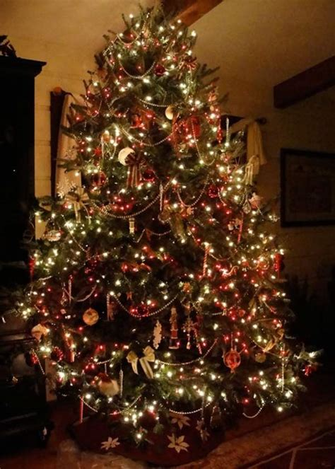 live christmas trees online pictures reference