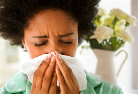 has allergies slideshow allergy myths and facts