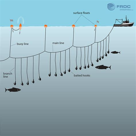 longline fishing boat design tuna troubles interview with chuck cook uniting art and