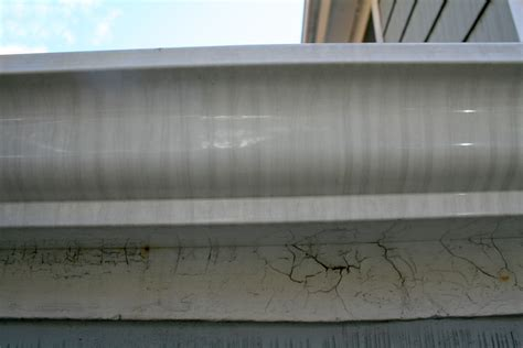 tiger gutters and siding grabbing tiger stripes by the exterior gutter cleaning