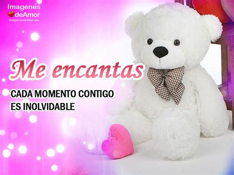 imagenes de osos de peluches que digan te amo imagenes de amor tiernas para celular con frases